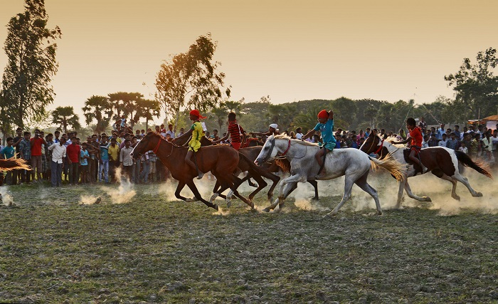 Horse Race in Rural Area