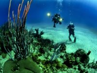 Beautiful Kauai is a Great Island for Scuba Diving
